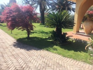 two-family house for sale Camaiore : two-family house with garden for sale Lido di Camaiore Camaiore