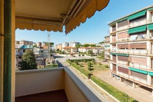 apartment to rent Viareggio : apartment  to rent viareggio Viareggio